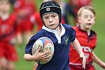 Junior Rugby, 15 June
