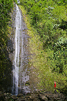 A hiker contemplates the beauty of Manoa falls on the leeward side of Oahu.