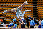 February 19, 2021: North Carolina's Brianna Greenlow competes on the beam during the 2nd Annual George McGinty Alumni Meet at the SECU Arena at Towson University in Towson, Maryland. Scott Serio/Eclipse Sportswire/CSM