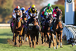 November 7, 2020 : Tarnawa, ridden by Colin Keane, wins the Longines Turf on Breeders' Cup Championship Saturday at Keeneland Race Course in Lexington, Kentucky on November 7, 2020. Wendy Wooley/Breeders' Cup/Eclipse Sportswire/CSM