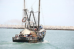 LOCALS TAKE RIDE ON FISHING BOAT IN SAN FELIPE MEXICO ON NAVY DAY (2)