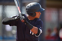 New York Yankees Everson Pereira (21) at bat during a Florida Instructional League game against the Philadelphia Phillies on October 11, 2018 at Yankee Complex in Tampa, Florida.  (Mike Janes/Four Seam Images)