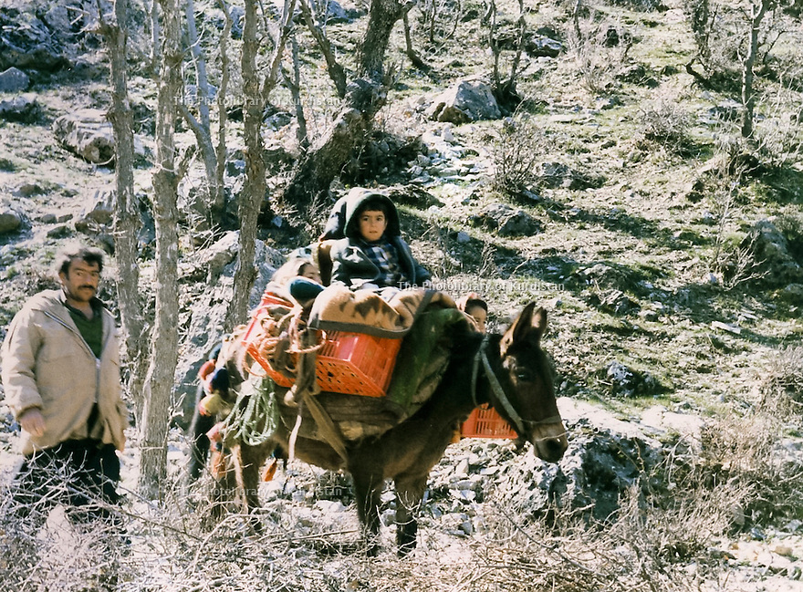 Iraq 1988.A family of Yarsamar on the way to exile .Irak 1988.Une famille de Yarsamar sur le chemin de l'exil vers l'Iran