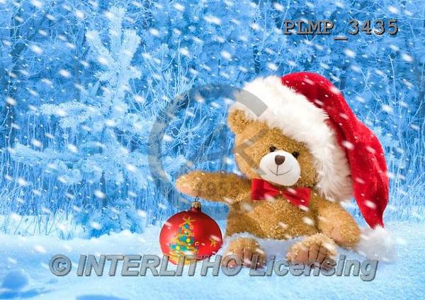 Marek, CHRISTMAS ANIMALS, WEIHNACHTEN TIERE, NAVIDAD ANIMALES, teddies, photos+++++,PLMP3435,#Xa# in snow,outsite,