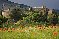 Europe/France/Provence-Alpes-Côte d'Azur/84/Vaucluse/ Lourmarin: le château
