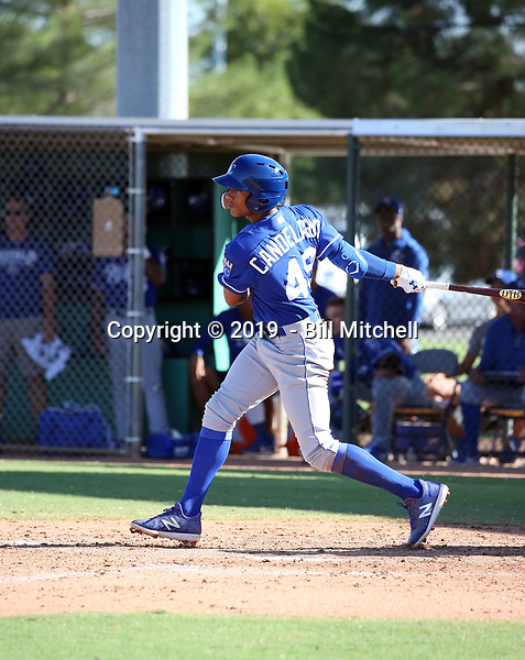 Wilmin Candelario - 2019 AIL Royals (Bill Mitchell)