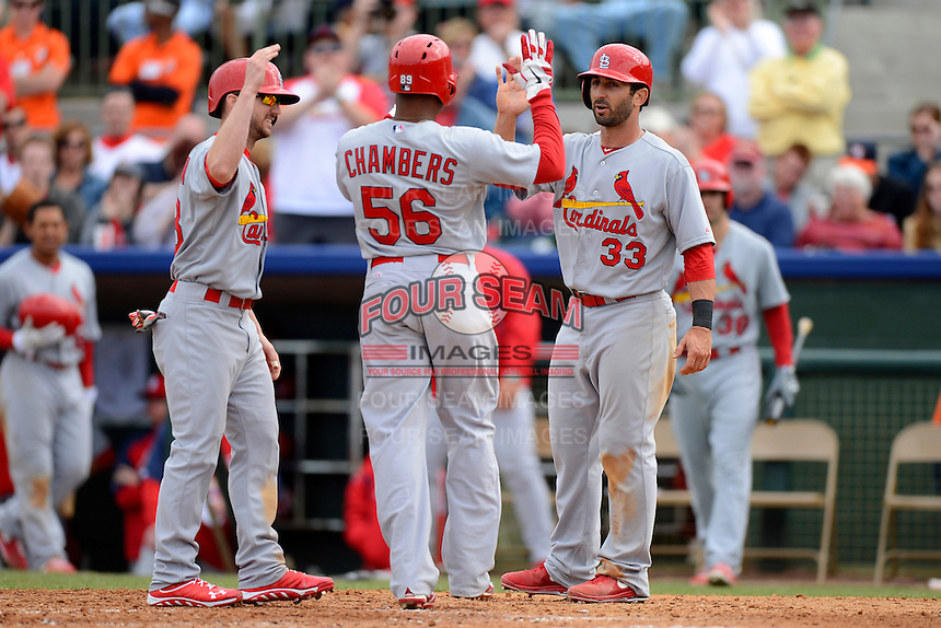 St. Louis Cardinals second baseman Daniel Descalso #33 and outfielder Shane Robinson #43 greet Adron Chambers #56 after a home run during a Spring Training game against the Houston Astros at Osceola County Stadium on March 1, 2013 in Kissimmee, Florida.  The game ended in a tie at 8-8.  (Mike Janes/Four Seam Images)
