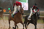 February 6, 2021: Boldor (5) (far left) with jockey David Cabrera aboard fighting off Seven Nation Army (2) to win the King Cotton Stakes at Oaklawn Racing Casino Resort in Hot Springs, Arkansas on February 6, 2021. Justin Manning/Eclipse Sportswire/CSM