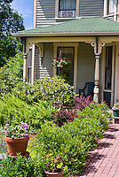 Front porch entrance garden with old house, brick walkway, shrubs, container plants, Berberis barberry, blue sky, landscaping