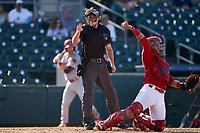 Umpire Taylor Payne calls a strike as catcher Ivan Herrera throws the ball back to the pitcher during a Florida State League game between the Clearwater Threshers and Palm Beach Cardinals on August 10, 2019 at Roger Dean Chevrolet Stadium in Jupiter, Florida.  Clearwater defeated Palm Beach 11-4.  (Mike Janes/Four Seam Images)