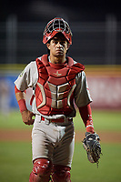 Johnson City Cardinals catcher Benito Santiago (31) during the second game of a doubleheader against the Princeton Rays on August 17, 2018 at Hunnicutt Field in Princeton, Virginia.  Princeton defeated Johnson City 12-1.  (Mike Janes/Four Seam Images)