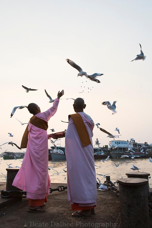Nuns feeding seagulls in Yangon harbor