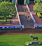 October 27, 2014: Scenes from Santa Anita Park, at Santa Anita Race Course in Arcadia, California on October 27, 2014. John Voorhees/ESW/CSM