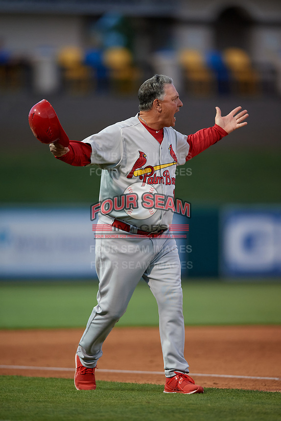 Palm Beach Cardinals manager Dann Bilardello (11) argues a call during a Florida State League game against the Lakeland Flying Tigers on April 17, 2019 at Publix Field at Joker Marchant Stadium in Lakeland, Florida.  Lakeland defeated Palm Beach 1-0.  (Mike Janes/Four Seam Images)