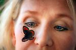 Deutschland, Bayern, Berchtesgadener Land, bei Schneizlreuth: Waldteufel Schmetterling (Erebia aethiops) Schmetterling des Jahres 2003 landet im Gesicht einer Frau | Germany, Bavaria, Berchtesgadener Land, near Schneizlreuth: a butterfly Scotch argus (Erebia aethiops) butterflyif the year 2003 landing in a woman's face