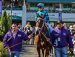 November 3, 2018: Stormy Liberal #9, ridden by Drayden Van Dyke, wins the Breeders' Cup Turf Sprint on Breeders' Cup World Championship Saturday at Churchill Downs on November 3, 2018 in Louisville, Kentucky. Candice Chavez/Eclipse Sportswire/CSM