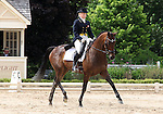 10 July 2009: Hawley Bennett-Awad riding Gin N Juice during the dressage phase of the CIC 3* Maui Jim Horse Trials at Lamplight Equestrian Center in Wayne, Illinois.