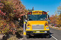 School bus making a stop.
