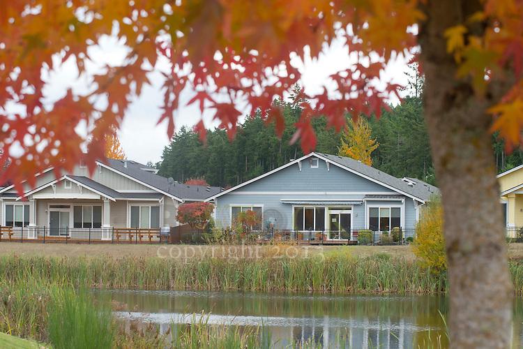 Houses on a pond