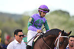 HOT SPRINGS, AR - APRIL 14: Magnum Moon #6, with jockey Luis Saez aboard before the running of the Arkansas Derby at Oaklawn Park on April 14, 2018 in Hot Springs, Arkansas. (Photo by Justin Manning/Eclipse Sportswire/Getty Images)