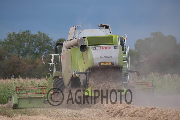 4.9.2020 Harvesting Spring barley in Lincolnshire<br /> ©Tim Scrivener Photographer 07850 303986<br />      ....Covering Agriculture In The UK.