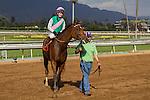 SEP 27,2014:Emollient,ridden by Rosie Napravnik,wins Rodeo Drive Stakes at Santa Anita Park in Arcadia,CA. Kazushi Ishida/ESW/CSM