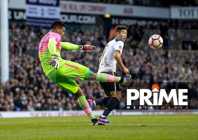Goalkeeper Jamal Blackman of Wycombe Wanderers (on loan from Chelsea) during the FA Cup 4th round match between Tottenham Hotspur and Wycombe Wanderers at White Hart Lane, London, England on the 28th January 2017. Photo by Liam McAvoy.