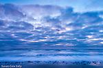 Sunrise at Revere Beach, Revere, Massachusetts, USA