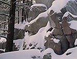 Devil's Lake State Park, WI<br /> Fresh snow blankets the boulders & trees on the East Bluff Trail