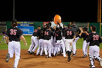 Batavia Muckdogs Milton Smith II (33) is mobbed by teammates after a walk off single, as Albert Guaimaro (13) pours the Gatorade bucket over the pile, during a NY-Penn League game against the State College Spikes on July 1, 2019 at Dwyer Stadium in Batavia, New York.  Batavia defeated State College 5-4.  (Mike Janes/Four Seam Images)