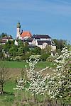 Germany, Bavaria, Upper Bavaria, Andechs: monastery Andechs, apple blossom