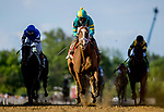 May 14, 2021: Army Wife #1, ridden by jockey Joel Rosario, wins the Black-Eyed Susan Stakes on Black-Eyed Susan Day at Pimlico Race Course in Baltimore, Maryland. Alex Evers/Eclipse Sportswire/CSM