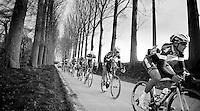 Team OmegaPharma-QuickStep & Belkin Pro Cycling dominating the race while descending into Nokere<br /> <br /> Kuurne-Brussel-Kuurne 2014