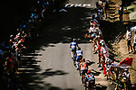 The peloton climbs during Stage 8 of the 2019 Tour de France running 200km from Macon to Saint-Etienne, France. 13th July 2019.<br /> Picture: ASO/Pauline Ballet   Cyclefile<br /> All photos usage must carry mandatory copyright credit (© Cyclefile   ASO/Pauline Ballet)