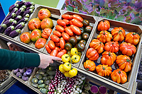 Nederland - Amsterdam - Januari 2020. HORECAVA. Kistjes met diverse groenten en fruit . Nieuwe tomatensoorten. Foto Berlinda van Dam / Hollandse Hoogte