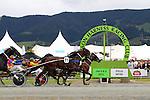 Nelson Harness Races, 8 Jan