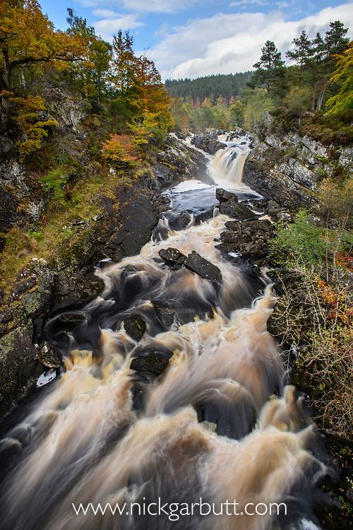 Rogie Falls and autumn woodland with Common oak or pedunculate oak (Quercus robur). Caledonian forest, Reilig Glen, Scottish Highlands. Scotland. October.