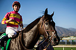 ARCADIA, CA - SEPTEMBER 30: Avenge #5 ridden by Flavien Prat enters the winners circle after Rodeo Drive Stakes at Santa Anita Park on September 30, 2017 in Arcadia, California. (Photo by Alex Evers/Eclipse Sportswire/Getty Images)