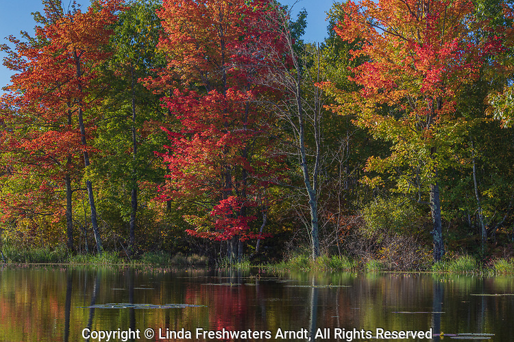 Autumn day on a wilderness lake in northern Wisconsin.