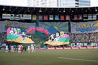 Portland, Oregon - Sunday, June 25, 2017.  Portland Timbers vs. Seattle Sounders FC in a match at Providence Park. Final Score: Portland Timbers 2, Seattle Sounders FC 2