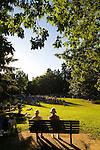 Summer Concert Series in Laurelhurst Park