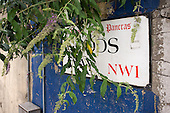 Buddleia growing over a Borough of St.Pancras street sign in Goods Way, Kings Cross, now part of the London Borough of Camden