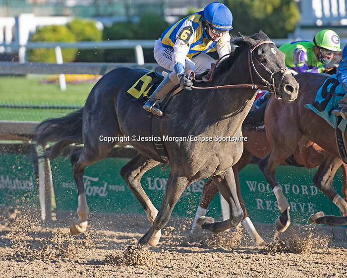 November 28, 2020: Leblon, trained by Paulo Lobo and ridden by Joe Talamo, wins Race 6, maiden special weight, at Churchill Downs in Louisville, Kentucky on November 28 2020. Jessica Morgan/Eclipse Sportswire.