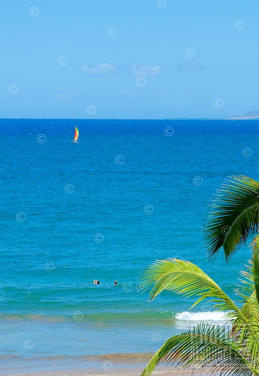 Two people enjoy the beautiful blue water of Wailea beach on West Maui. Palm fronds in foreground and sailboat in background