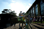 Palace Malice leaves the paddock prior to the 145th running of the Belmont Stakes, at Belmont Park in Elmont, New York on June 8, 2013.