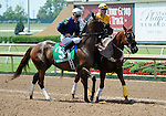 10 May 31: Wasted Tears (no. 5), ridden by Cliff Berry and trained by Bart Evans, wins the 12th running of the grade 3 Ouija Board Handicap for fillies and mares three years old and upward at Lone Star Park in Grand Prairie, Texas.