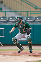 Dartmouth Big Green catcher Logan Adams (10) during practice before a game against the USF Bulls on March 17, 2019 at USF Baseball Stadium in Tampa, Florida.  USF defeated Dartmouth 4-1.  (Mike Janes/Four Seam Images)