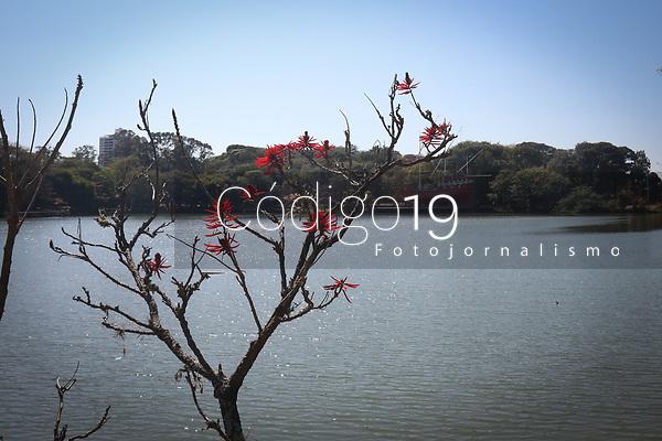 Campinas (SP), 04/08/2021 - Clima-SP - Tempo aberto e céu azul em Campinas, vista da lagoa do Taquaral, nesta quarta-feira (04).