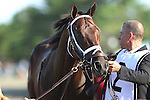August 2, 2015. Competitve Edge, trained by Todd Pletcher, walks to the paddock before the  Grade I William Hill Haskell Invitational Stakes, one and 1/8 miles on the dirt for three year olds at Monmouth Park in Oceanport, NJ.  Joan Fairman Kanes/ESW/CSM