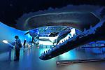 Wales of Iceland Museum in Reykjavik, Iceland. (Bob Gathany)